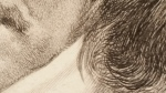 Allard_Carolus_4_Pelo_Descartes_Retrato_grabado_Carolus_Allard_jonas_Suyderhoef_1650_frans_hals